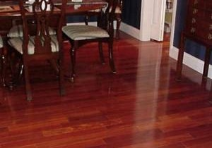 Yes, you can have gleaming wood floors and a dog!